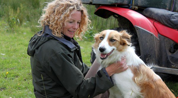 Aww! Twitter ADORED Kate Humble's sheepdog show