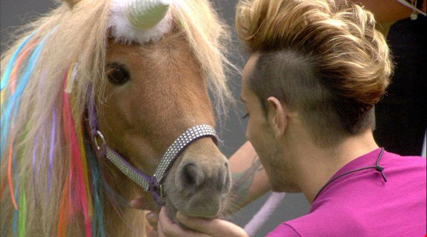 'Literally my dream': Viewers jealous as Celebrity Big Brother house is visited by puppies, llamas and a unicorn